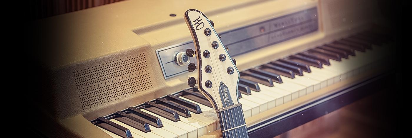 Mayones Guitars & Basses Warranty