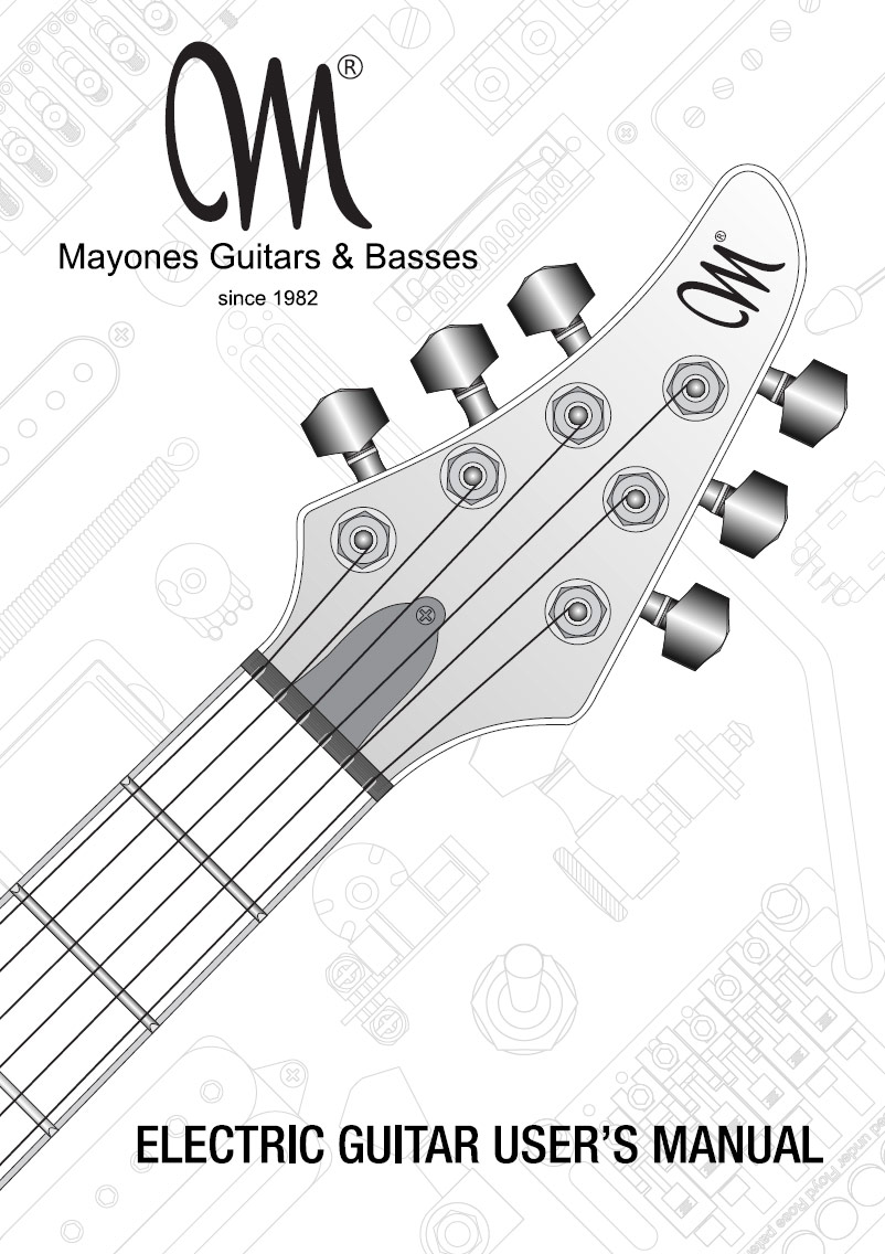Guitar Manual - English