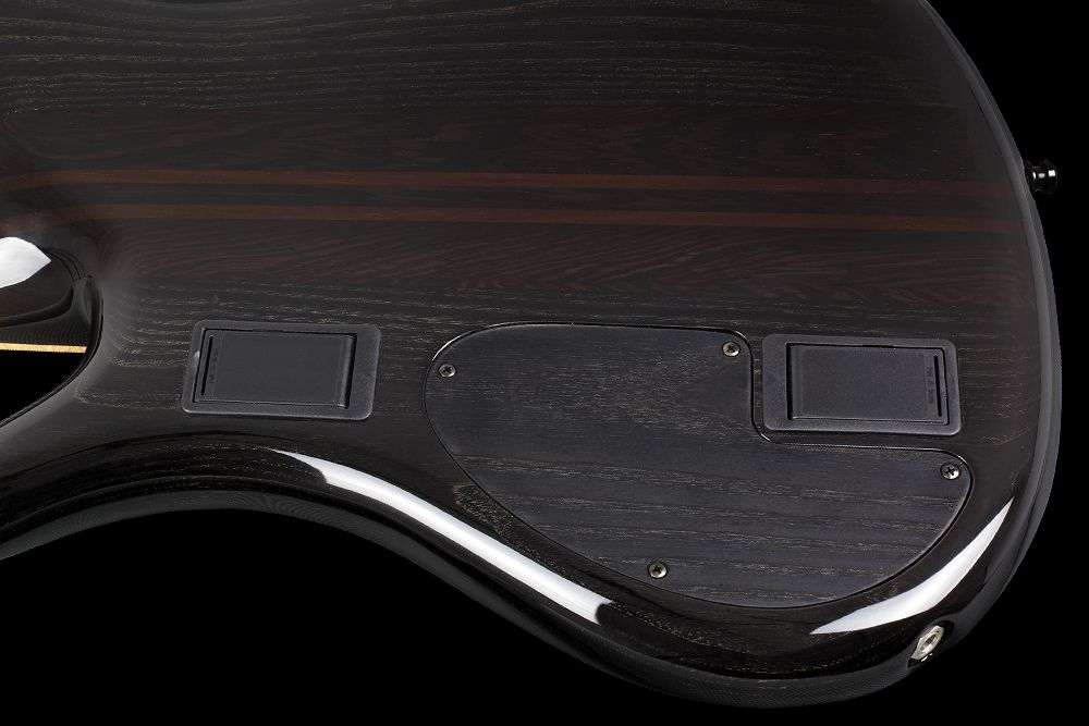 Mayones Patriot 5 Custom Ash - Master Builder Collection 2012 - Electronic compartment and two separate 9V battery boxes