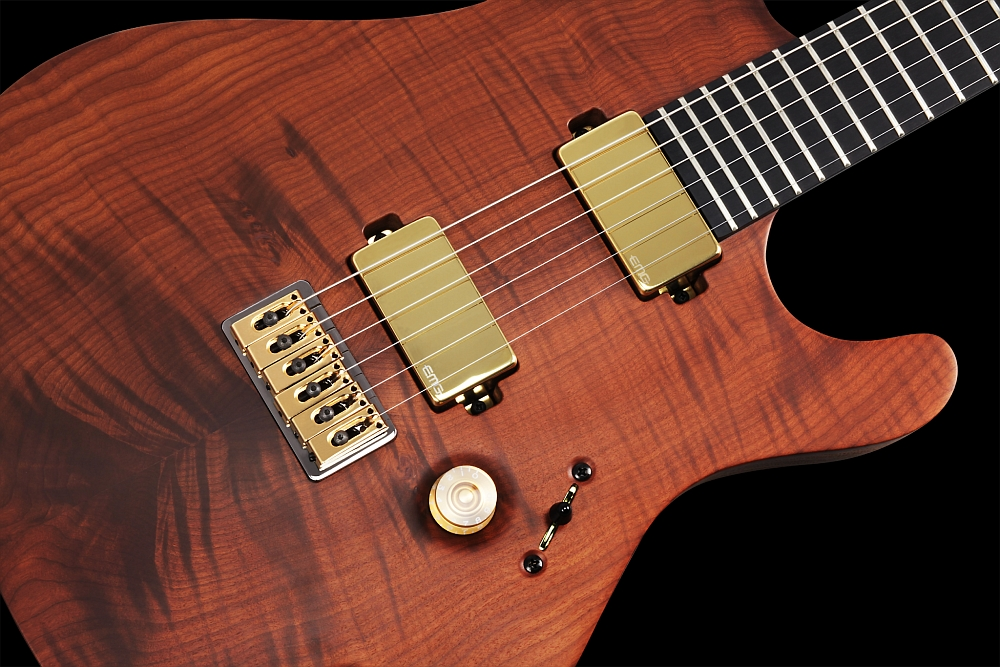 Mayones Regius 6 Flamed Maple T.E.W. - Master Builder Collection 2014 - ABM 3256 fixed strings-thru-body bridge