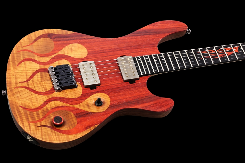 Mayones Regius 6 Flames - Master Builder Collection 2014 - Flamed Maple T.E.W & Padouk top, Swamp Ash T.E.W. body wings, Ebony fingerboard