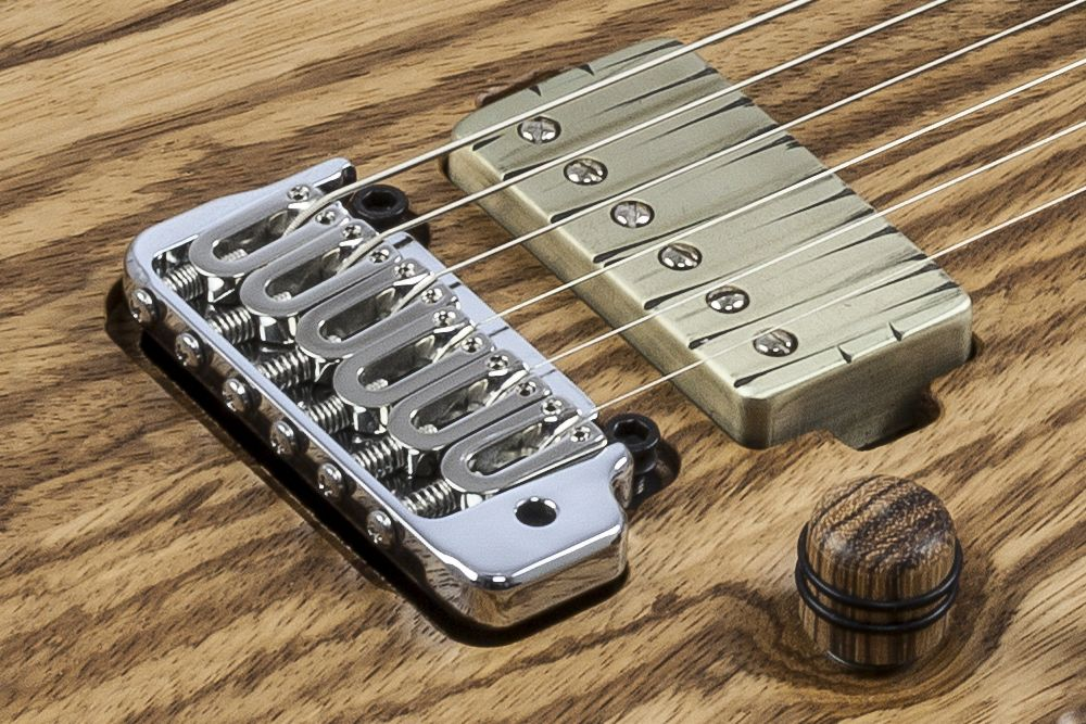 Mayones Regius 6 V24 Zebrawood - Master Builder Collection 2016 - Hipshot US Contour modern tremolo bridge