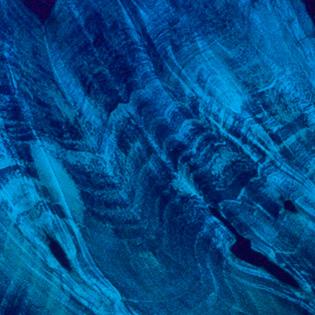 Trans Blue (Buckeye Burl)