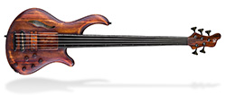 Patriot MR Fretless 5 - Antique Brown