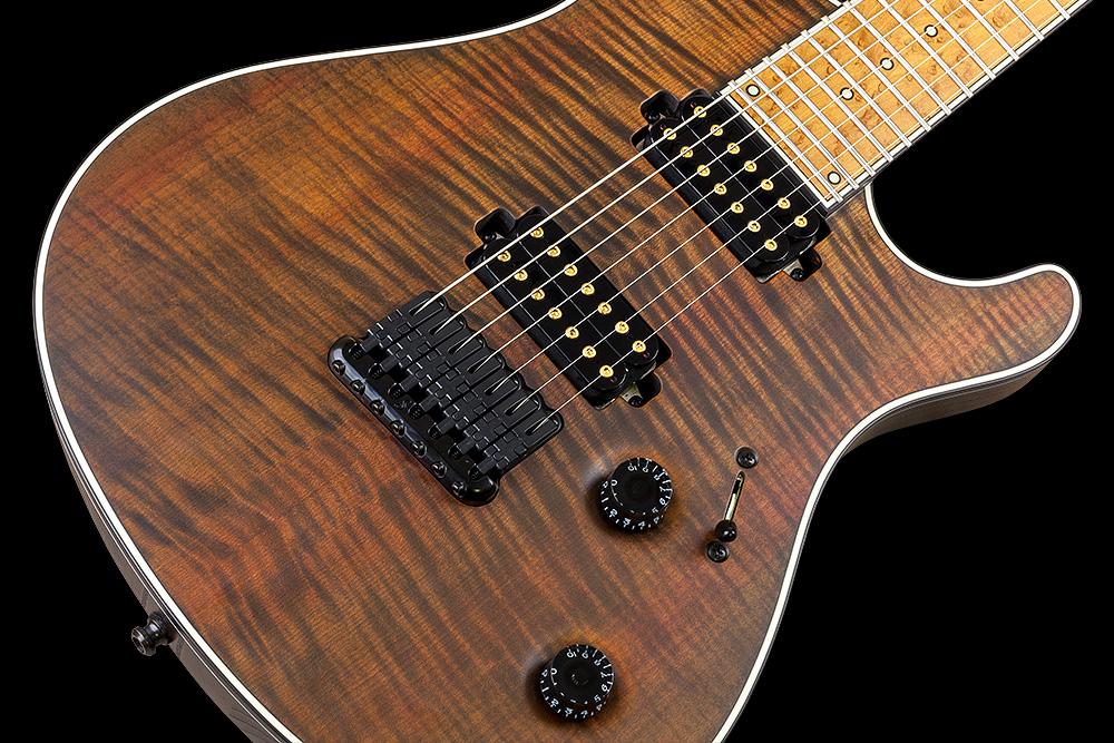 Regius TEW 7 • Mayones Guitars & Basses