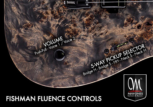 Fishman Fluence Control Layout