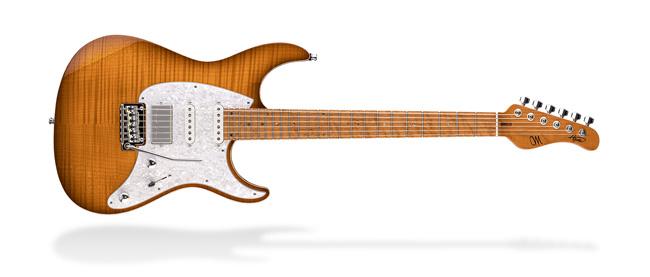 Mayones Guitars & Basses Aquila Series
